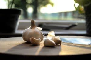 store fresh garlic bulbs
