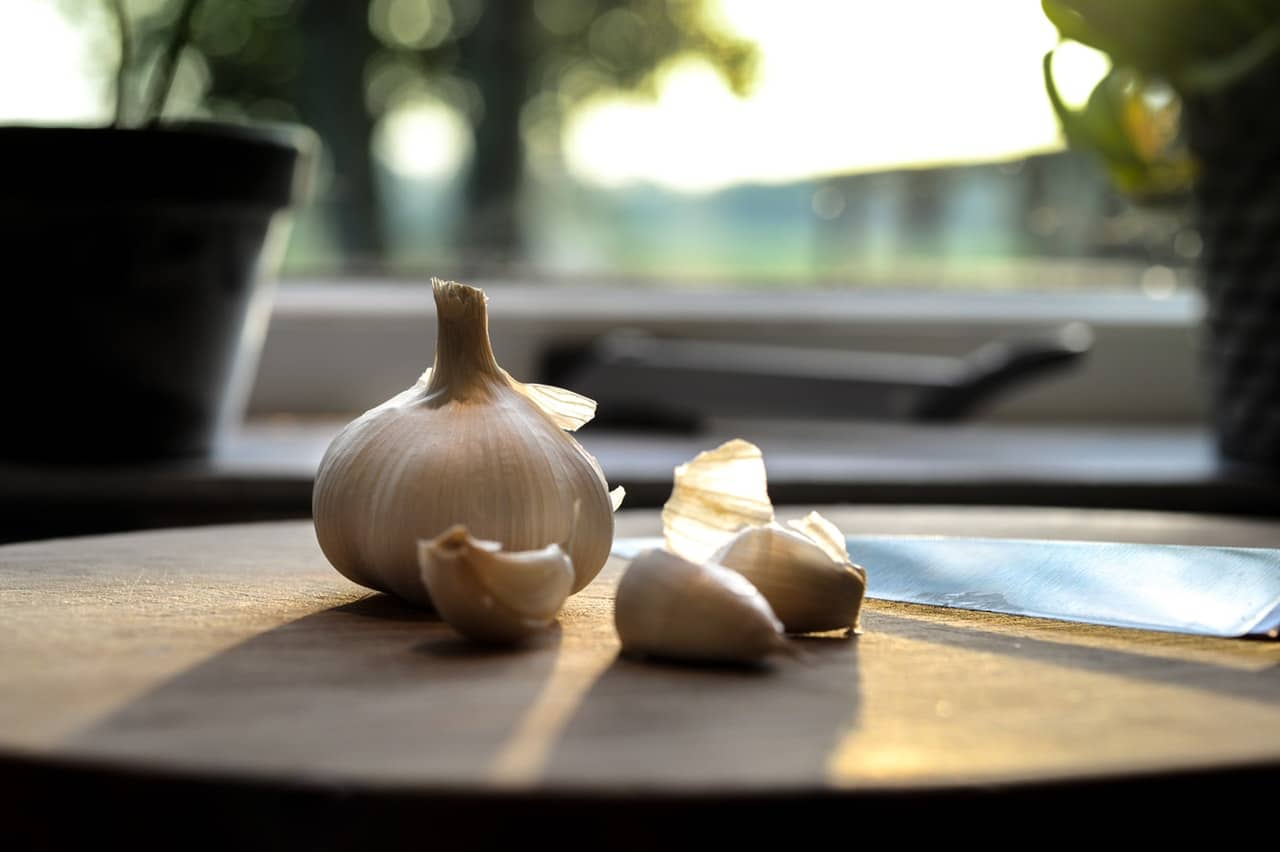 store fresh garlic bulbs