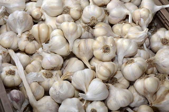 The Best Way to Store Fresh Garlic Bulbs