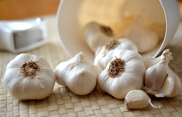 storing garlic bulbs