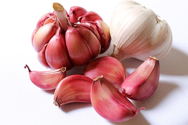 different garlic types