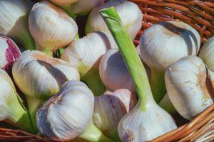 garlic-keeper